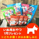 Pop_sample_dog