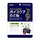 【まとめ買い×6】カンロ ボイスケアのど飴 個包装タイプ 70g×6袋セット ( お菓子・の