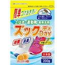 上ばき運動靴専用 洗剤 ズックDAY ×10点セット(4904112828995)