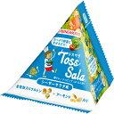 【メーカー直送・代引不可・同梱不可】【味の素】Toss Sala シーザーサラダ味 20.8g