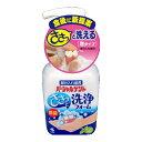 【送料無料】小林製薬 パーシャルデント 洗浄フォーム 250ml×24点セット まとめ買い特価!ケース販売 ( 4987072072837 )