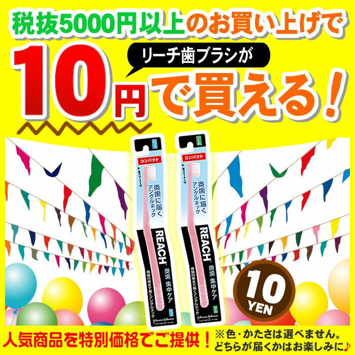 【5000円以上購入者限定】お試し商品サンプルB リーチ 歯ブラシ 1本 ※ハブラシの色・かたさは選べません。どれが届くかお楽しみに! ( ★他の試供品サンプルと同時購入できません )