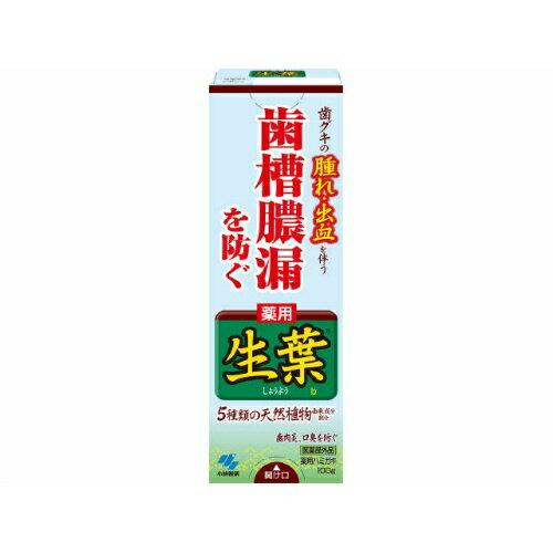 【まとめ買い】【小林製薬】薬用ハミガキ生葉【100G】 ×48個セット