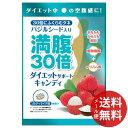【メール便送料無料】グラフィコ 満腹30倍 ダイエットサポートキャンディ ソルティライチ 42g 1個