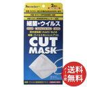 【メール便送料無料】リーダー ウイルス防御専用マスク N95マスク 2枚入 1個