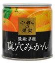 【 送料無料 】 K&K にっぽんの果実 真穴みかん×12個セット (4901592905109)