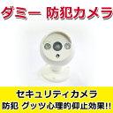 ダミーカメラ 新型笑顔ダミー防犯カメラ/ダミー監視カメラ/赤LED/ダミーカメラ 偽装カメラ E1605-AB-BX-09