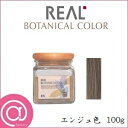 リアル化学 ボタニカルカラー 100g エンジュ色 【ヘアケア/美容/トリートメント/ヘアカラー】