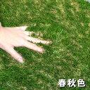 ■安全性検査済み■色までリアルなロール人工芝(芝丈40mm・10m×1m)夏色・春秋色のカラーバリエーションは当店だけ!商品型番:fme-4010