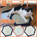 猫ワープ! 手作り猫畳 -岡山杖の会-