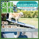 \ページ限定・ティースプーン付/ 犬用お出かけ用品 ペットス...