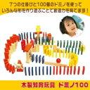 知育おもちゃ≪ドミノ100≫