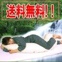 星虎の体圧分散抱き枕の通販 ■送料無料・代引手数料無料■【smtb-s】