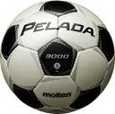 モルテン molten サッカー ペレーダ3000 土用 5号球 F5P3000 シャンパンシルバー×メタリックブラック 検定球
