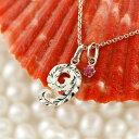 ショッピング数 ハワイアンジュエリー ネックレス メンズ 数字 9 ルビー ネックレス プラチナ ペンダント トップ ナンバー pt900 チェーン 人気 7月誕生石 男性用 赤い宝石 の 送料無料