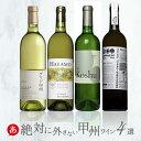 日本ワイン送料無料ワインセット[絶対に外さない甲州ワイン4本]白ワインセット辛口国産ワイン/グレイスグリド甲州