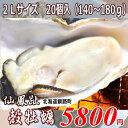 北海道/釧路町仙鳳趾/殻付き牡蠣 2Lサイズ 20個/(1個130?180g)