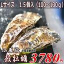 北海道/釧路町仙鳳趾/殻付牡蠣 L15個/(100〜130g