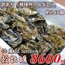 牡蠣140個前後/訳あり/ハネ/北海道/釧路町仙鳳趾/生牡蠣 8キロ 姫牡蠣 商標登録 第6077570号