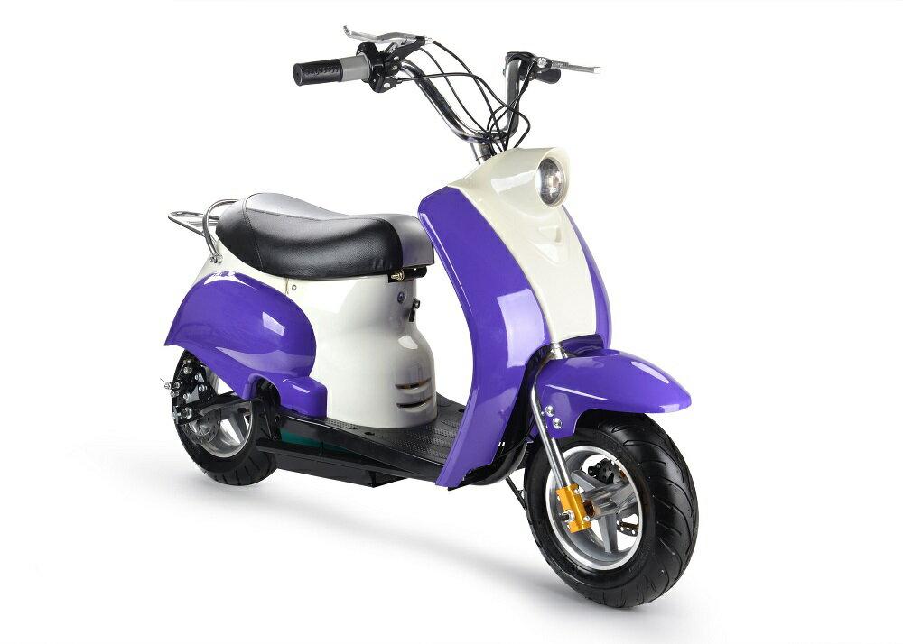 充電式 ミニ電動バイク 90%組立済み ES008