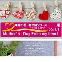 【送料無料】バスケット入母の日ギフトおまかせ季節の花グレードアップ寄せカゴ2018【smtb-td】