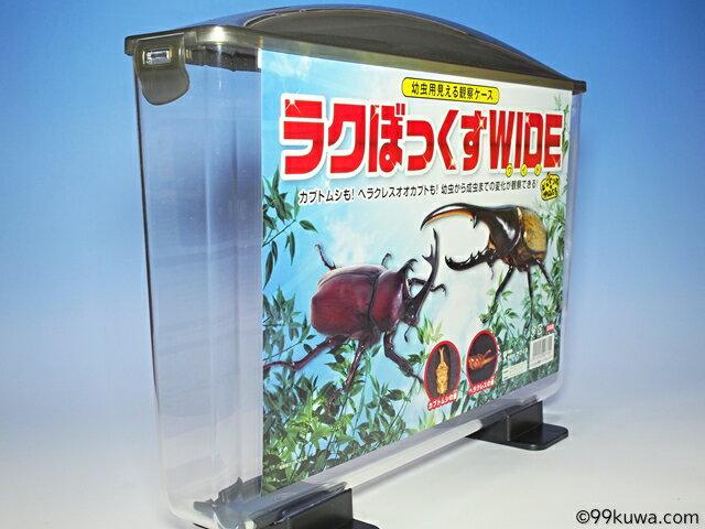 幼虫用見える観察ケース・ラクボックスワイドの紹介画像2