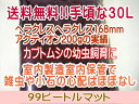 送料無料カブトムシ幼虫マット・99ビートルマット 30L(カブト幼虫飼育用)【koushin_0701_F】
