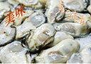 ショッピング2~3人用 【冬の味覚、美味しい新商品】産地直送、広島牡蠣むき身 生食用 殻付き牡蠣 加熱調理用(2〜3人用)むき身 500gと殻付き 10個セット【ポイント消化にどうぞ】贈り物にもお勧めです。【代引き発送不可】