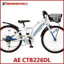 子供用自転車 アメリカンイーグル AE CTB226DL (ホワイト/ブルー) 4271 AMERICAN EAGLE CTB 226 DL ジュニア マウンテン バイク サギサカ SAGISAKA