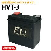 【1年保証付き】 F1 バッテリー 【XL1200R スポーツスター1200ロードスター/04〜用】バッテリー[YTX14L-BS] 互換 ハーレー用 MFバッテリー 【HVT-3】【02P03Dec16】