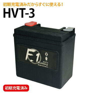 HVT-3��YTX14L-BS�ߴ��ۡڰ¿���1ǯ�ݾڡۡڽ��źѤߡۡ�F1�ۡڥХ����ѡۡڥϡ��졼�ۡڥХåƥ��