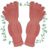 シルク5本指ソックス。Mサイズ。天然植物の茜を濃く草木染めしています。履き心地のとてもいいソックスです。履くとくるぶしの上あたりの長さです。5本指ソックス かかとなしMサイズ 茜こい染め