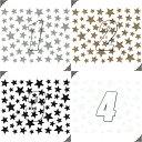 ネイルシール ラメ スター 星形 選べる10種類♪