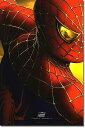 ショッピングマグ 【映画ポスター】 スパイダーマン2 (トビー・マグワイア) /1st ADV-DS glossy