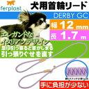 送料無料 犬 首輪 リード 引っ張ると首がしまる 幅12mm長1.7m 紫 ペット用品 ferplast GC12/170 適応体重60kgまで 大型犬〜超大型犬 Fa5166