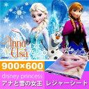 送料無料 アナと雪の女王 レジャーシート ござ 90×60cm VS1 キャラクターグッズ 子供用シート ディズニー アナ エルサ Sk600