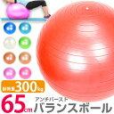 バランスボール 65cm アンチバースト 耐荷重300kg フットポンプ付き エクササイズボール y...