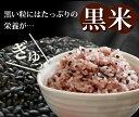 【送料無料】日本ハム 袋のままできる チキンオムライス115gパック×1ケース(全10本)