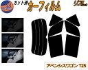 リア (s) アベンシス ワゴン T25 カット済みカーフィルム リアー セット リヤー サイド リヤセット 車種別 スモークフィルム リアセット 専用 成形 フイルム 日よけ 窓ガラス ウインドウ 紫外線 UVカット 車用フィルム 250系 AZT250W AZT255W AZT251W トヨタ