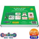電子ブロック 【電脳サーキット アップグレードキット300t
