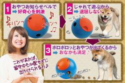 「おやつボールコロわん!Foobler」ころワンころわんコロワン愛犬給餌器おやつ留守番玩具愛犬用トイ電池式自動餌やり器犬用品【楽フェス_ポイント2倍】