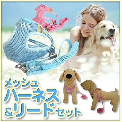 メール便送料無料メッシュハーネス・リードセット85番ハーネス小型犬中型犬犬ハーネスリードセットリュッ