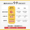 【12月10日までポイント5倍】【3泊4日】台湾 レンタル