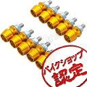 【ナンバーボルト】【カウリングボルト】【フックボルト】【M6】【ボルト】【ポイント10倍】【フックボルト】カウリングボルト ナンバーボルト M6 ゴールド カウリングボルト M6 ボルト