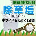 Ca2kgx12-s-sb2