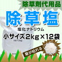 Na2kgx12-s-sb2