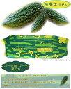 ゴーヤDEゴーヤ ゴーヤの培養土 20L 《緑のカーテンに!!》 このパッケージの中でゴーヤが育てられます!! 元肥入り プロトリーフ グリーンカーテン 園芸用土 ガーデニング 10P27May16