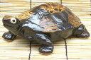【日本の侘び寂びに欠かせない…】 信楽焼 福寿亀 カメ 8号 陶器 置物 縁起物 お正月 玄関先に 雑貨 開店祝い 新築祝い プレゼント 贈り物 おしゃれでかわいい