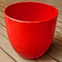 シクラメンに 鉢カバー バーゼル レッド 19cm 5号鉢用 ドイツ製 ハイドロカルチャー(水耕栽培)に最適な鉢 おしゃれ 陶器鉢 Soendgen KeramiK社製 観葉植物にピッタリ