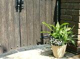 植木鉢 ローザ 13cm スペイン製 テラコッタ 素焼き鉢 陶器鉢 園芸 ガーデニング *Spanish Terracotta* 【RCP】